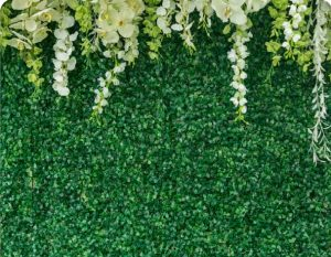 green hedge wall photo booth background