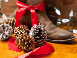 cowboy boots and pine cones red ribbon