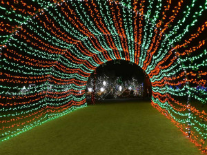 christmas holiday lights drive through tunnel